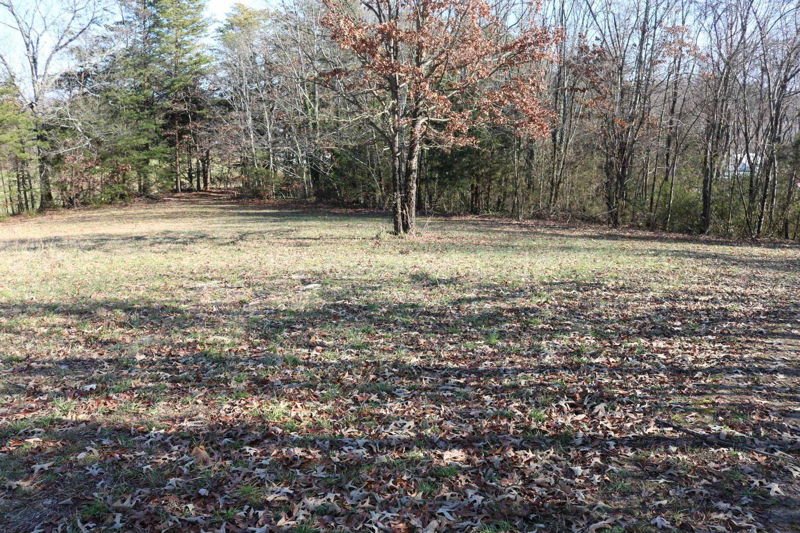 Gorgeous 1 acre lot in Greeneville!